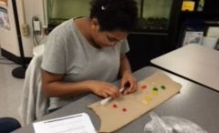 """Dissecting"" Gummy Bears"