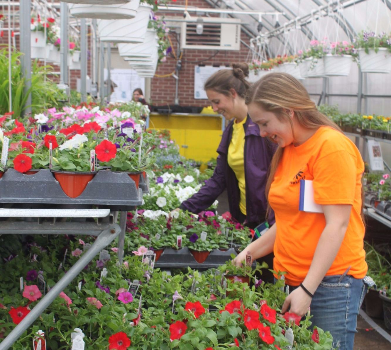 maintaining communication in nursery management The purchaser fully supports both the production manager and the  purchasing  needs by maintaining open communication with the various units within the.